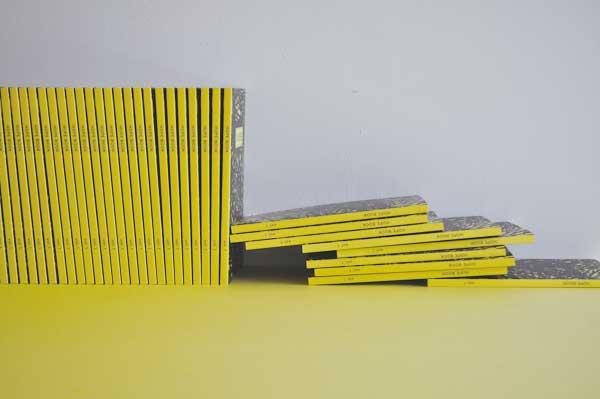 2_yellow-side03_DSC_0219